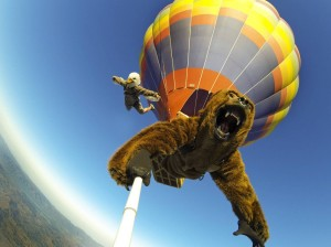 GoPro Flying Bear